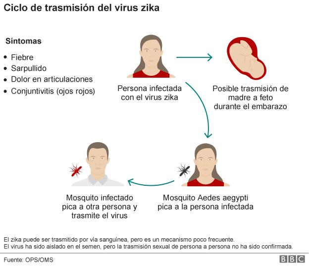 sintomas del zika.png