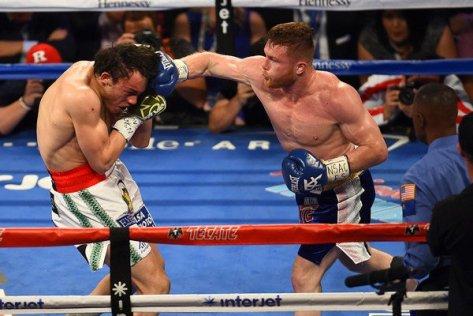 pelea 02.jpg